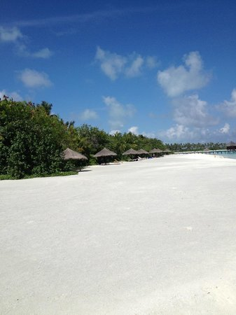 Olhuveli Beach & Spa Resort:                                     Beach Villas