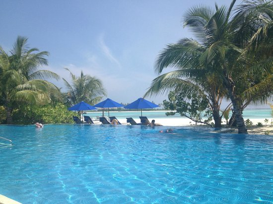 Olhuveli Beach & Spa Resort:                                     Infinity pool