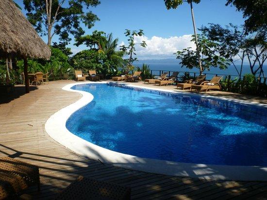Lapa Rios Ecolodge Osa Peninsula:                                     Crystal Clear Chlorine-Free Pool