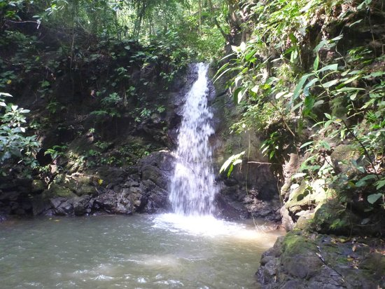 Lapa Rios Ecolodge Osa Peninsula:                                     Small Waterfall