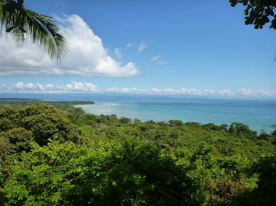 Lapa Rios Ecolodge Osa Peninsula:                                     View of Golfo Dulce from path rest spot 2