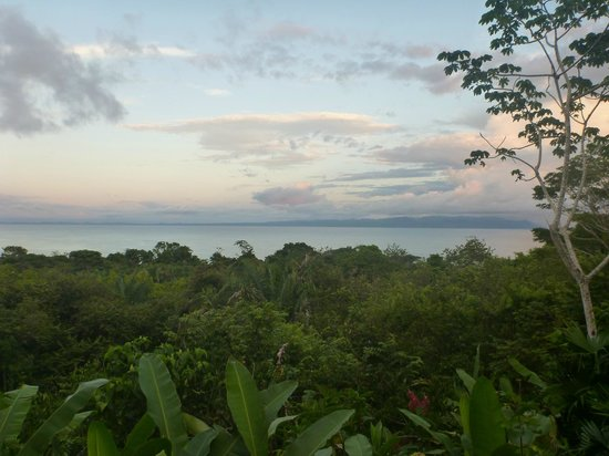 Lapa Rios Ecolodge Osa Peninsula:                                     Evening View from Our Deck