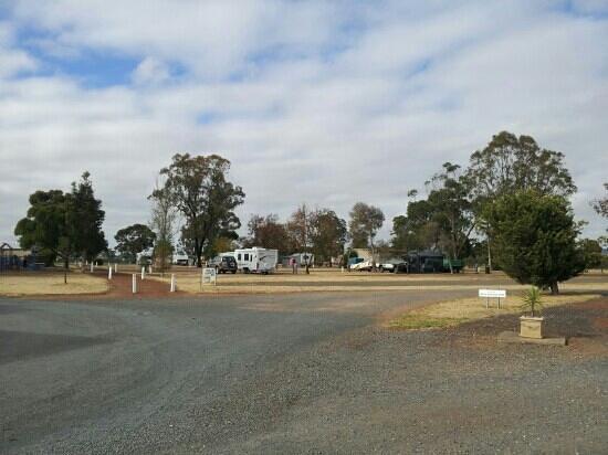 Wimmera Lakes Caravan Resort:                   camp site
