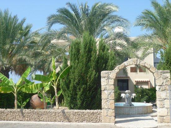 Hadjiantoni Anna Hotel Apartments:                   Gardens