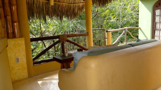 Casitas Tortugas :                   View from the Jungle Penthouse