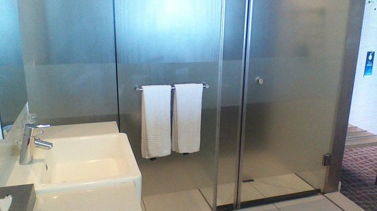 Radisson Blu Hotel, Port Elizabeth: Toilet and shower