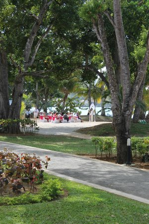 Hotel Riu Palace Tropical Bay:                   mariage sur la plage vue de notre chambre