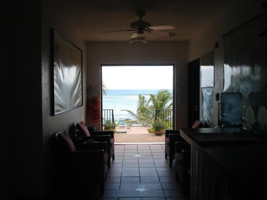 Turtle Nest Inn:                                     Looking out at the pool and ocean from the lobby