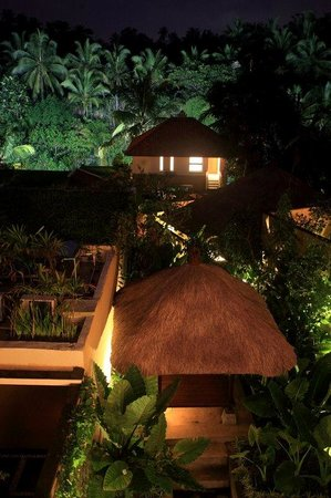 Ubud Green: Night View From Firefly Restaurant
