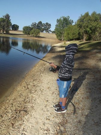 Diamond Forest Cottages:                                     Fishing