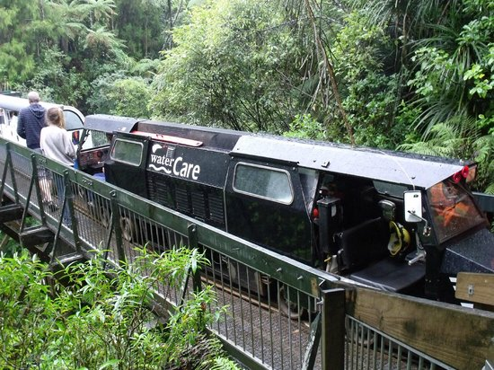 Rainforest Express: The train