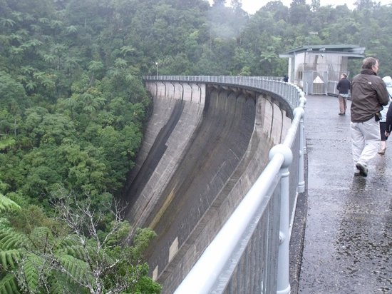 Rainforest Express: On top of the dam