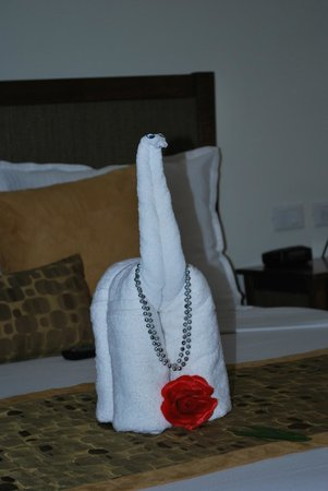 Luxury Bahia Principe Sian Ka'an Don Pablo Collection: Towel Animal