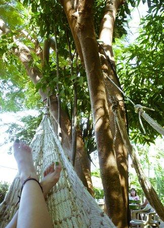 La Casa de Felipe:                                     Relax time
