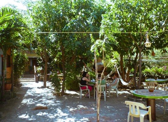 La Casa de Felipe:                                     5
