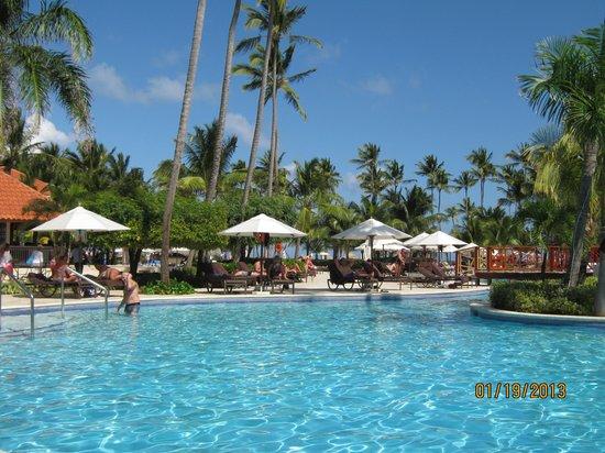 Dreams Palm Beach Punta Cana:                   Poolside