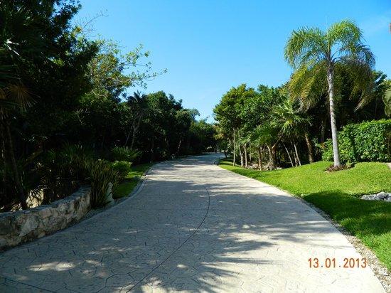 Valentin Imperial Maya: site