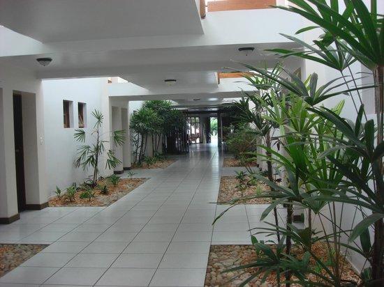 تروبيكال أوشينو برايا:                   pasillos internos                 