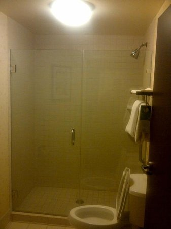 Springhill Suites Louisville Airport: Walk-in shower, door needed adjustment