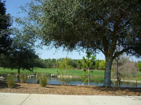 Holiday Inn Club Vacations At Orange Lake Resort:                   front