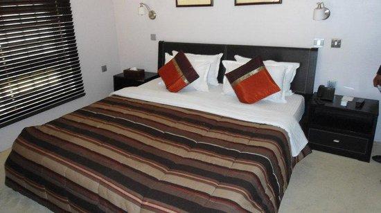 Pearl Manor Luxury Suites : Guest Room