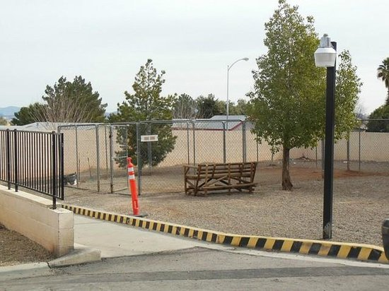Arizona Charlie's Boulder RV Park:                   Fenced dog area