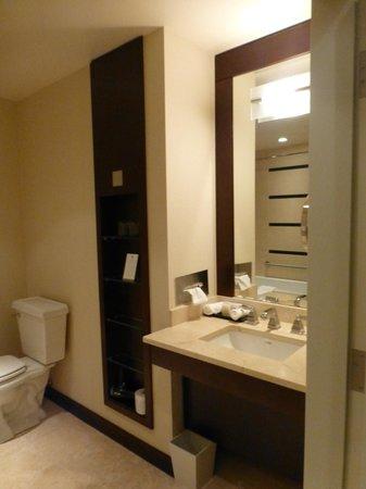 St. Regis Hotel:                   Bathroom