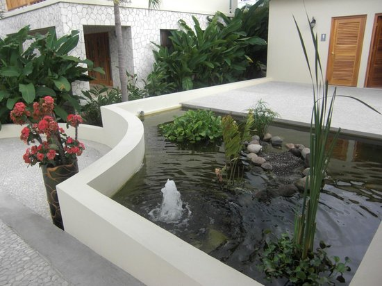 The SPA Retreat Boutique Hotel:                                     fountains surrounding spa area