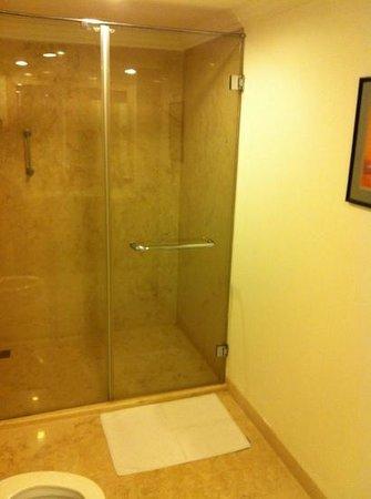 Taj Connemara, Chennai: Shower