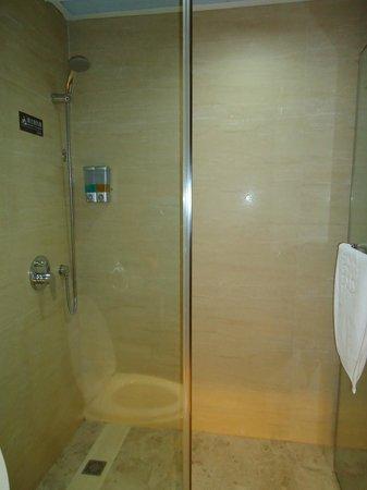 Gandian Hotel:                   shower