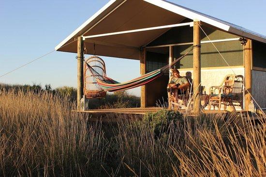 Wilderness Island Safari Holidays : Beach front cabins at Wilderness Island