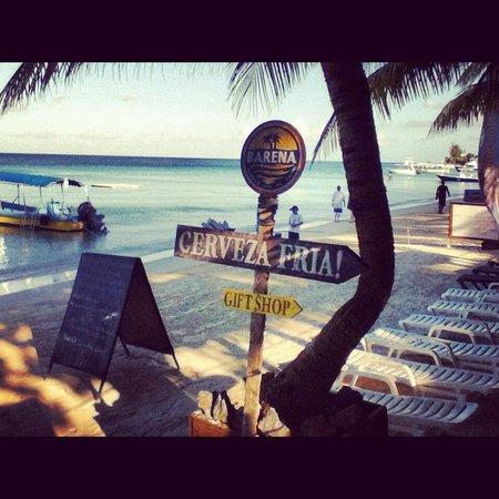 Bananarama Beach and Dive Resort :                                     Cold beer