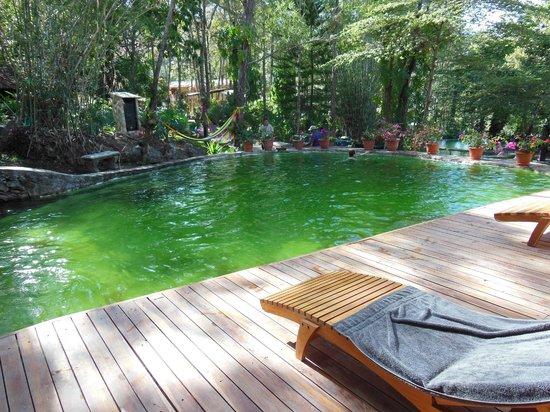 Cuscatlan Tours - Day Tours :                   Santa Teresa Hot Springs