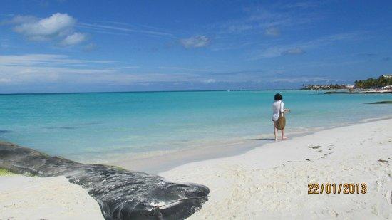 Playa Norte:                                     Paraiso