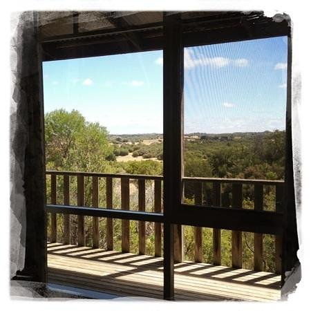 Hilltonia Homestead:                   the balcony view
