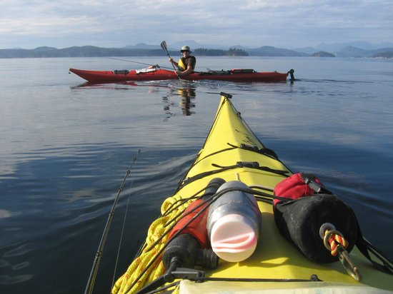 Quadra Island Kayaks - Day Tours: Playtime on the ocean...