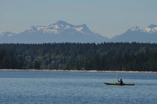 Quadra Island Kayaks - Day Tours: Vancouver Island Mountain Range