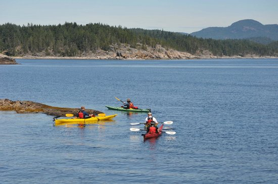 Quadra Island Kayaks - Day Tours: Exploring the islands....