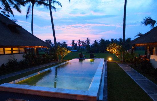 Beautiful Lodtunduh Sari