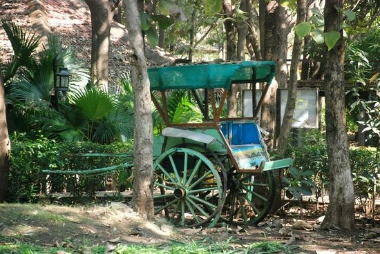 Palghar, Indien: Old age cart on display at the premises