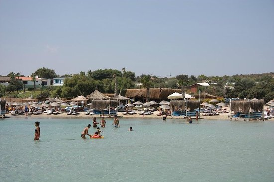 Fun Beach Club:                   Fun beach,palm rest and the beatiful clear eagean sea