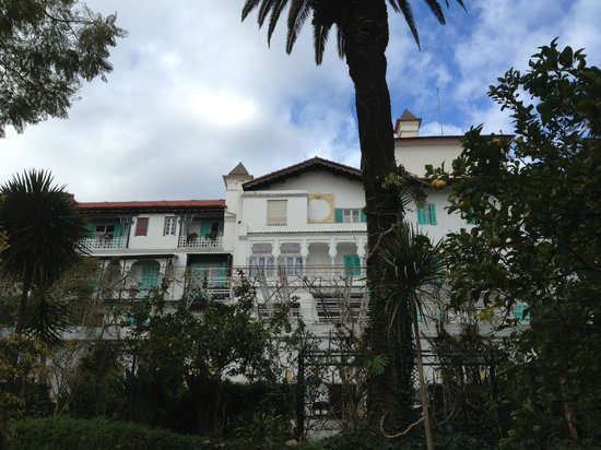 Hotel Saint George El Djazair :                   view from the botanical garden