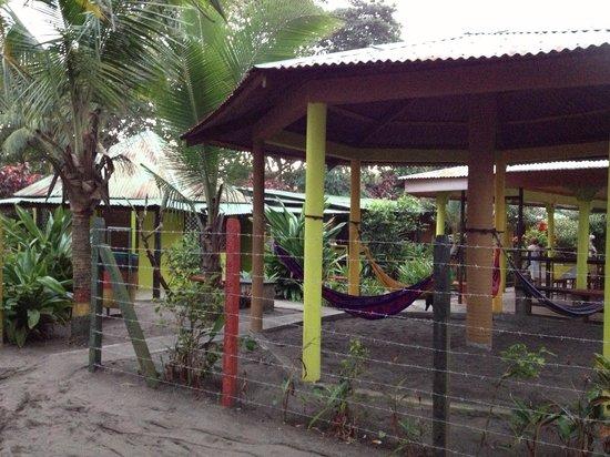 Cabinas El Icaco Tortuguero:                                                                         Amacas