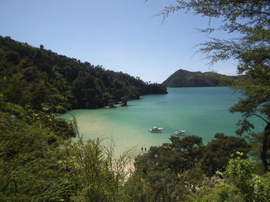 Wilsons Abel Tasman: Stillwell Bay