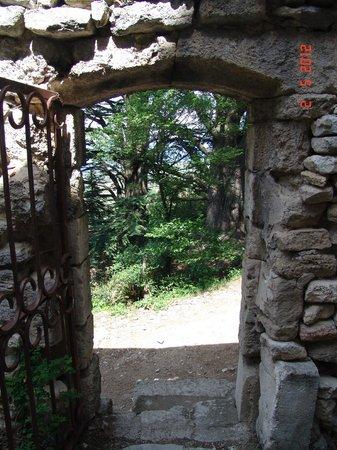 Les Terrasses du Luberon : Bonnieux