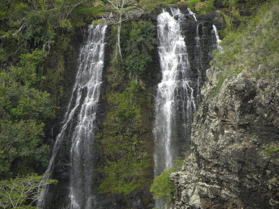 Best of Kauai Tour :                   waterfalls