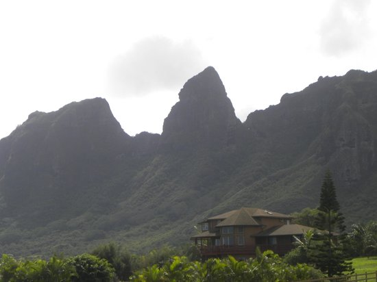 Best of Kauai Tour :                   king kong?