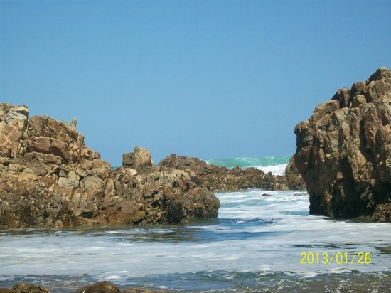 Buffalo Bay:                   Rock pools down the road