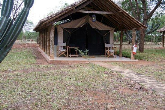 Voyager Ziwani, Tsavo West:                   la nostra tenda
