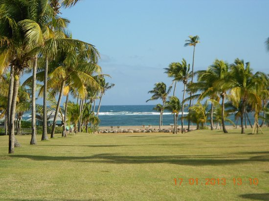 Nisbet Plantation Beach Club:                   view from Great House down to beach